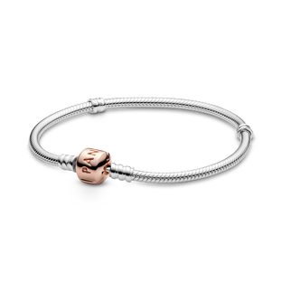 Pandora Moments Ormkedjearmband
